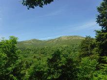 6月至仏山