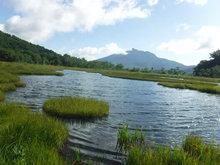 池塘と浮島